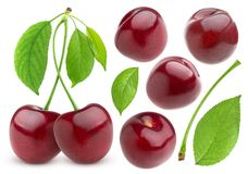 Cherry isolated on white background. Cherries collection. Cherries collection. Cherry isolated on white background Stock Images