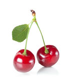 Cherries couple Royalty Free Stock Photography