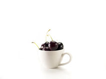 Cherries in a cup. Isolated cherries in a white cup Royalty Free Stock Images