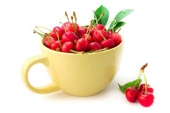 Cherries in the cup. Isolated on white background Royalty Free Stock Image