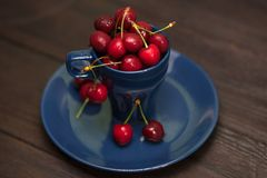 Cherries in the Cup stock photo