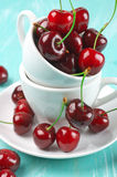 Cherries in cup. On turquoise wooden background Stock Photos