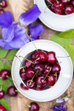 Cherries in the cup on wooden table. Cherries in the beautiful cup on wooden table Royalty Free Stock Photos