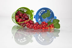 Cherries and currants. In small buckets directly after harvest Stock Photo