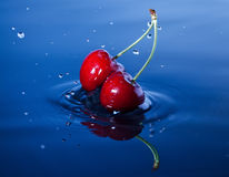 Cherries falls in water. Two cherries falls deeply under water with a splash Royalty Free Stock Images