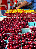 Cherries at farmers' market Stock Photo