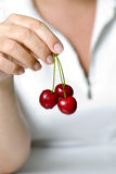 Cherries in fingers. Three red cherries in woman fingres royalty free stock images