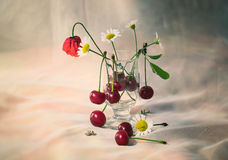 Cherries and flowers. Still life with cherries and flowers in a sunny summer day Royalty Free Stock Image