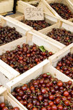 Cherries at a French market Stock Photos