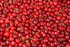 Cherries fresh fruit background Stock Photos