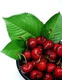 cherries fresh leaves Στοκ Εικόνα