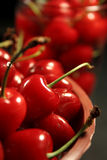 Cherries fruit. Depth of filed of a bunch cherries fruit in basket Royalty Free Stock Photo