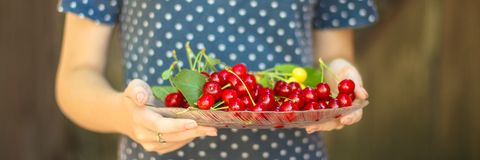 Cherries, fruit berries, harvest ripe and juicy fruits. top copy space. food background. Cherries, fruit berries, harvest ripe and juicy fruits. topncopy space royalty free stock photos