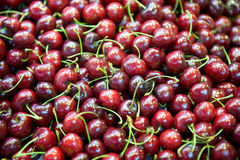 Cherries fruit fresh Stock Photography