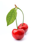 Cherries fruit Stock Photos