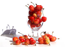 Cherries in a glass.  Royalty Free Stock Images