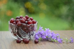 Cherries in a glass bowl stock photo