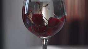 Cherries in a glass with water stock footage