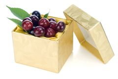 Cherries golden gift concept Stock Images