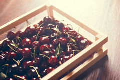 Cherries group in a wooden box. On morning light Royalty Free Stock Photos