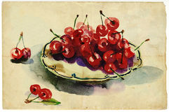 Cherries. An hand drawn illustration - watercolors technique on old paper Stock Photos