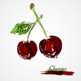Cherries. Hand drawn vector cherries ripe fruit on light background Stock Photos