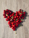 Cherries heart stock photography