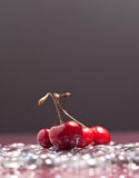 Cherries on Ice Royalty Free Stock Photo