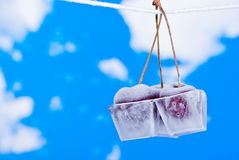 Cherries in ice cubes Stock Images
