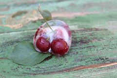 Cherries in ice. Frozen fruits. Royalty Free Stock Photo