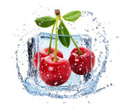 Cherries in ice with water splash Royalty Free Stock Photography