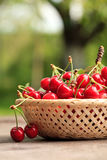 Cherries In Basket Royalty Free Stock Photography