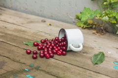 Cherries in an iron cup Stock Photo
