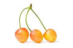 Cherries isolated Royalty Free Stock Photo