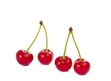 Cherries isolated Stock Images