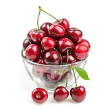 Cherries isolated Stock Photography