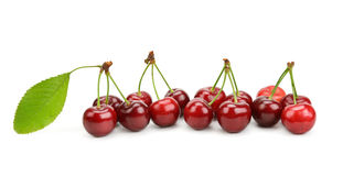 Cherries isolated on a white background Royalty Free Stock Images