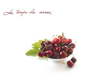 Cherries isolated on white Royalty Free Stock Image