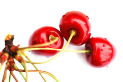 Cherries IV royalty free stock photos