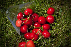 Cherries On The Lawn Royalty Free Stock Photos