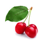 Cherries and leaf Stock Image