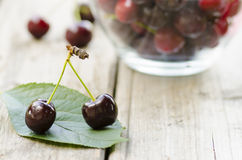 Cherries on leaf and in bowl. On wood background Royalty Free Stock Photography