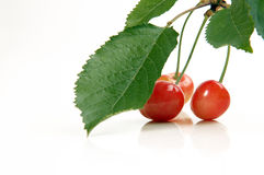 Cherries with leaves close up Stock Photo