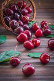 Cherries with leaves enough sleep from a basket. On a wooden background stock photos