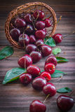 Cherries with leaves enough sleep from a basket. On a wooden background stock image