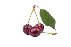 Cherries with leaves stock photography
