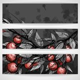 Cherries With Leaves. Vector Illustration. Eps 10 stock illustration