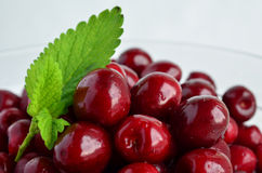 Cherries and Lemon balm leaf 5. Fresh, washed cherries in glas bowl decorated with green Lemon balm leaf Stock Photos