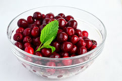 Cherries and Lemon balm leaf 7. Fresh, washed cherries in glas bowl decorated with green Lemon balm leaf Royalty Free Stock Photo