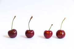 Cherries line up - isolated white background. Cherries line up in isolated white background Royalty Free Stock Photo